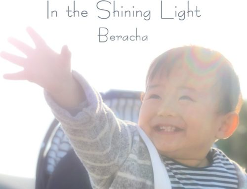 Beracha In the Shining Light ~輝く光の中を~